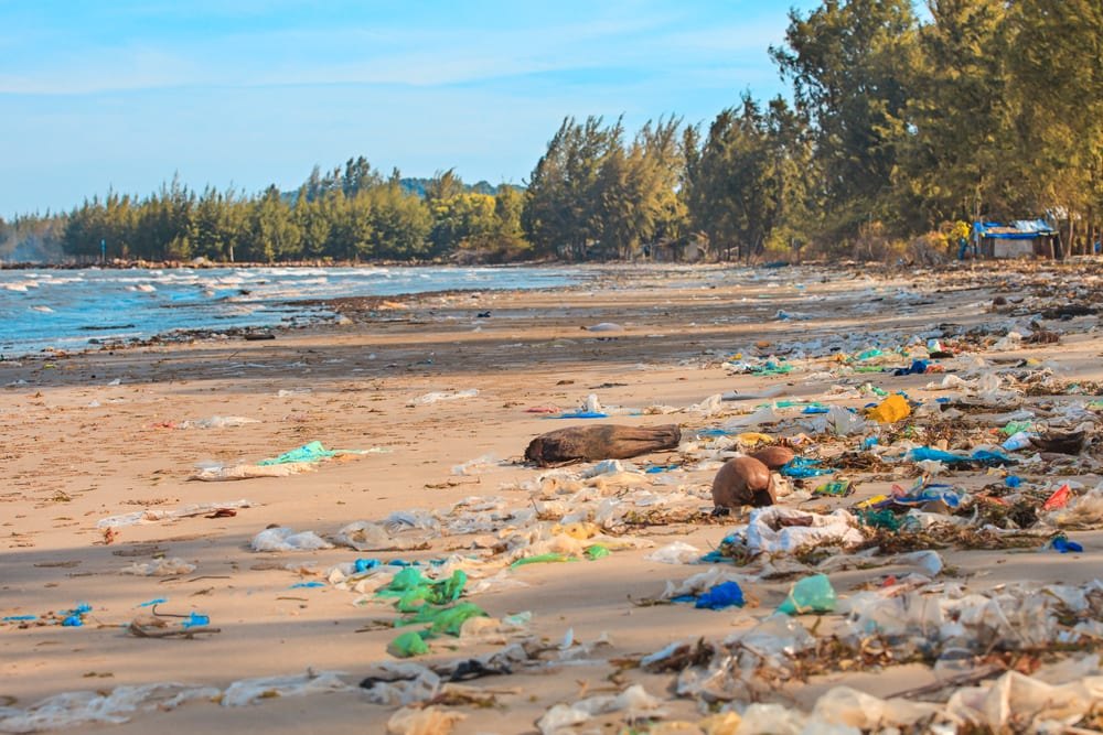 How to live sustainably - Plastic pollution
