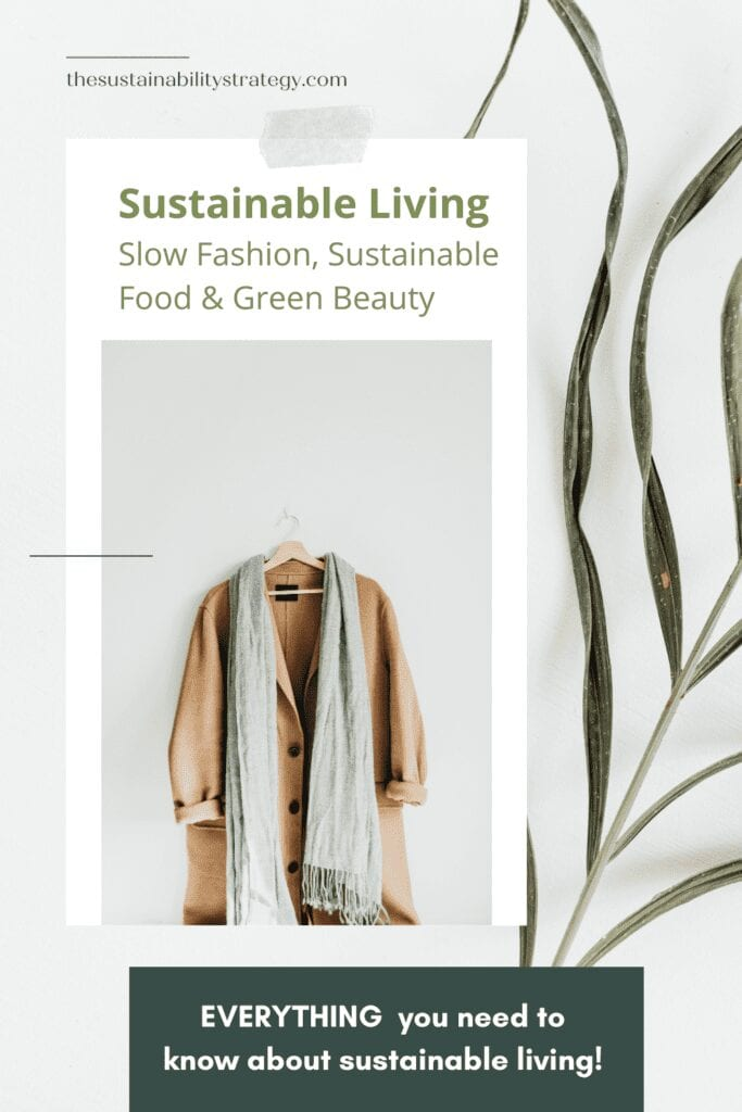 Pinterest the sustainability strategy